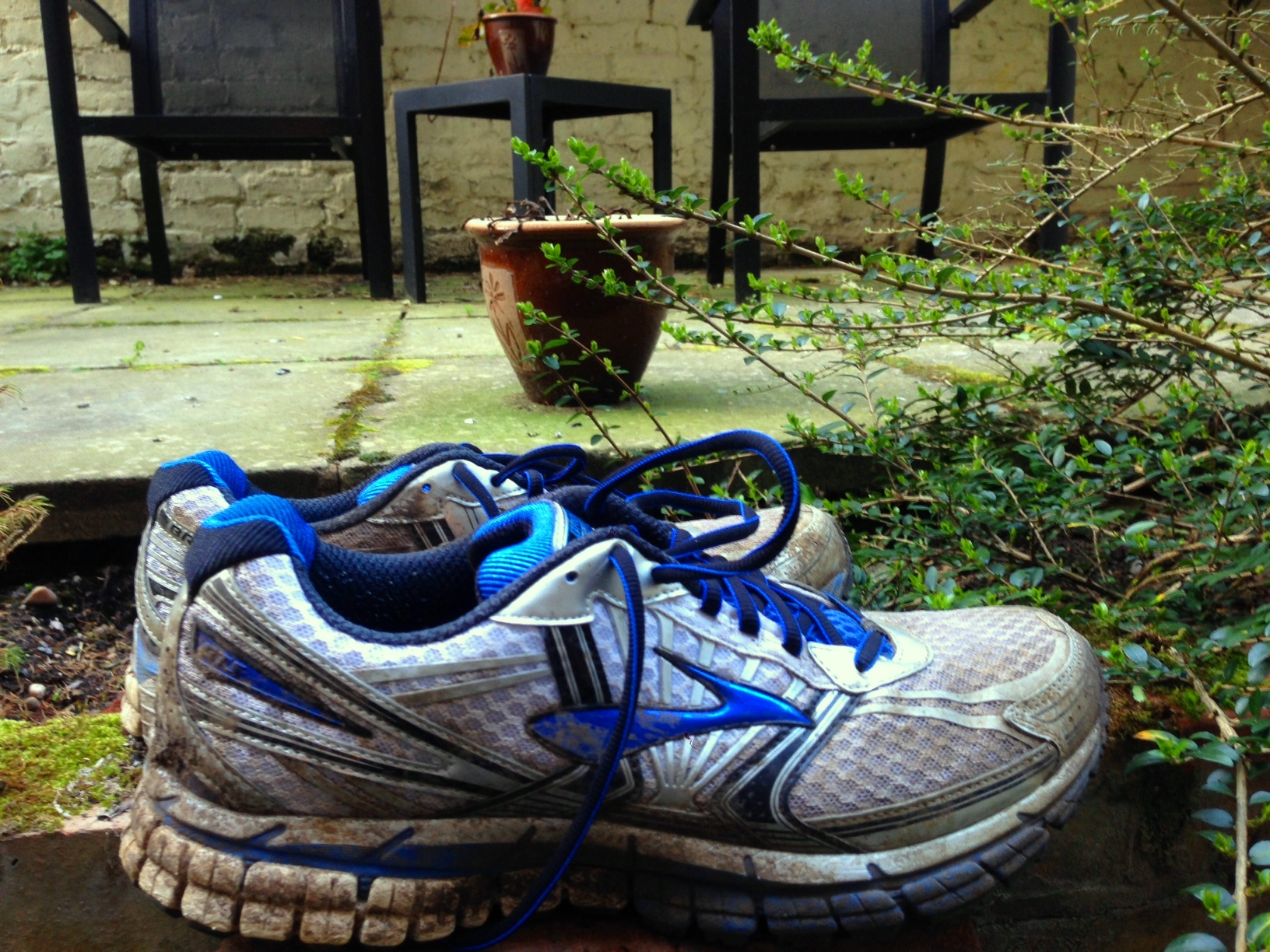 Long Distance Running Shoes Reddit